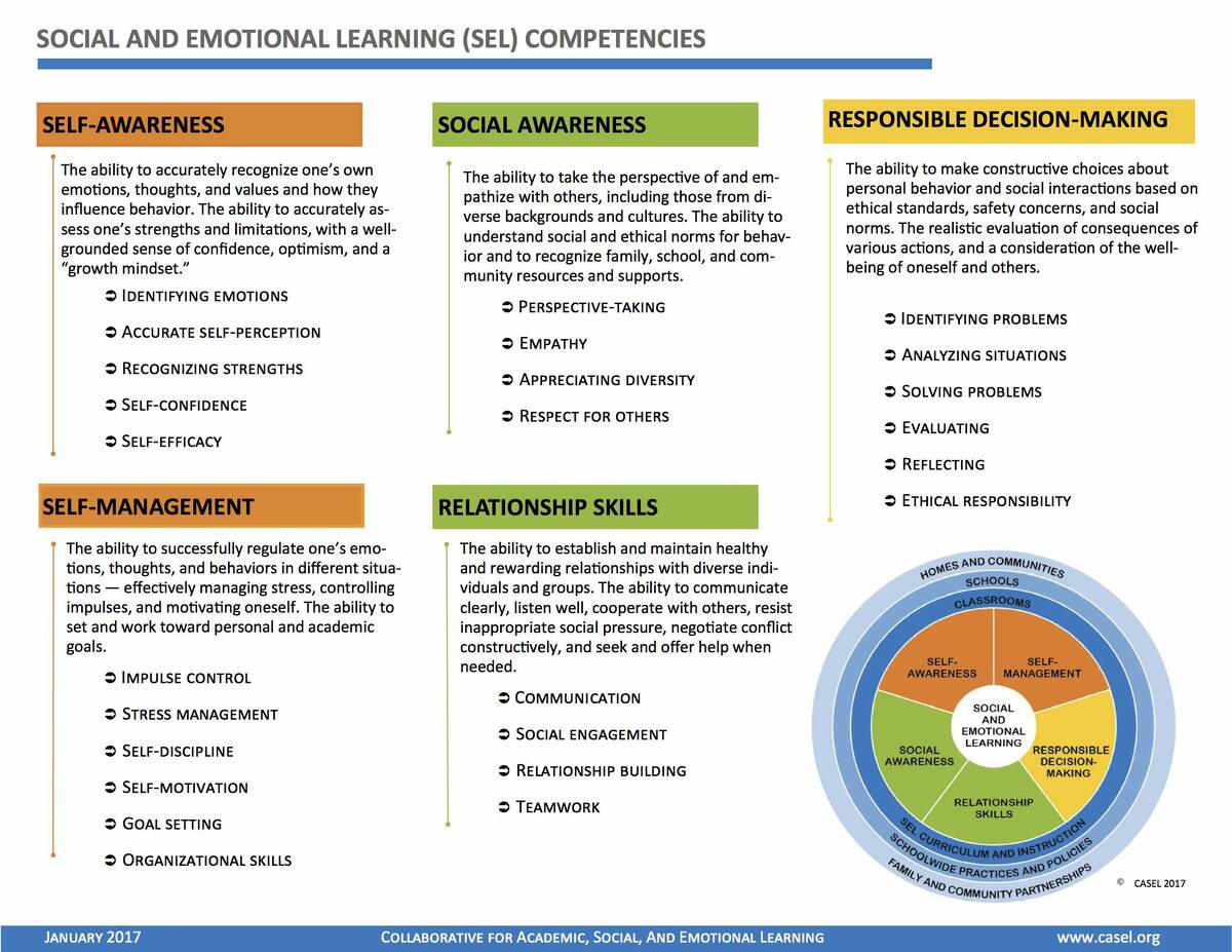 SEL Competencies and Skills